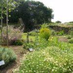 Jardin aux Simples Chateau de Kergroadez
